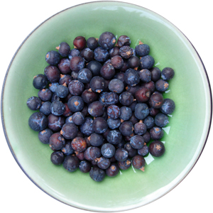 Juniper berries in a bowl