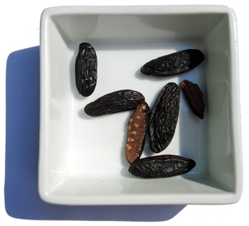 Tonka Beans, in a square white bowl, with shadow.